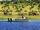 chobe-river-boat-cruise