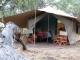 khwai-bedouin-tent