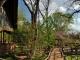 muchenje-safari-lodge-pathways