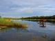 okavango-river-caprivi