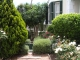 leeuwenvoet-garden