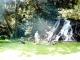 enjoy-a-waterfall-picnic-arusha