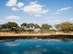 swala-camp-infinity-pool