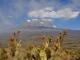 walk-on-lower-slopes-kilimanjaro