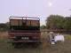 chongwe-sundowners-full-moon