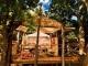 island-bush-camp