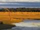 kafunta-lodge-floodplain