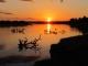 luangwa-river-sunset