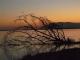 stunning-zambezi-sunset